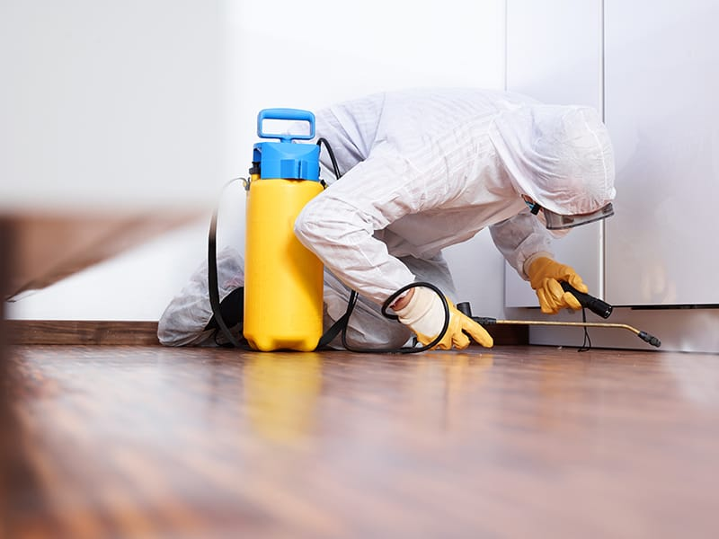 Pest Control Services - Commercial and Industrial Service